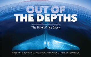 Out Of The Depths The Blue Whale Story
